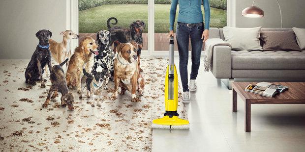 Lavadora de pavimentos para uso doméstico