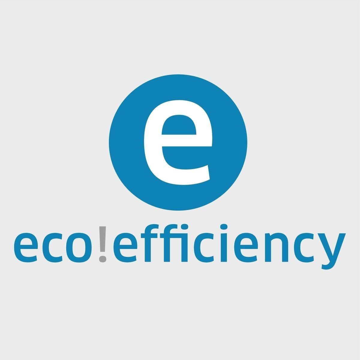 logo ecoefficiency 4c det 1502x502 - LIMPIADORA DE VAPOR Y ASPIRADOR KARCHER SGV 8/5  1.092-010.0