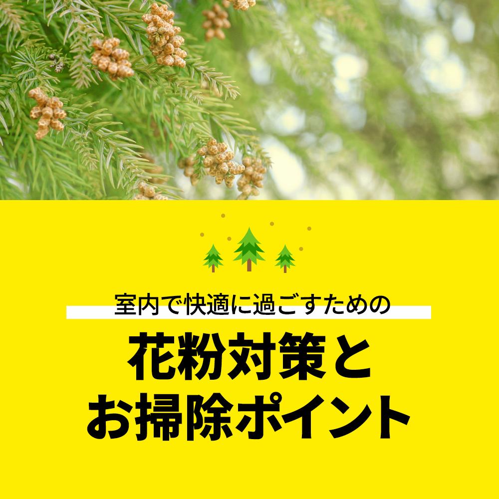 室内の花粉を減らす掃除のコツ