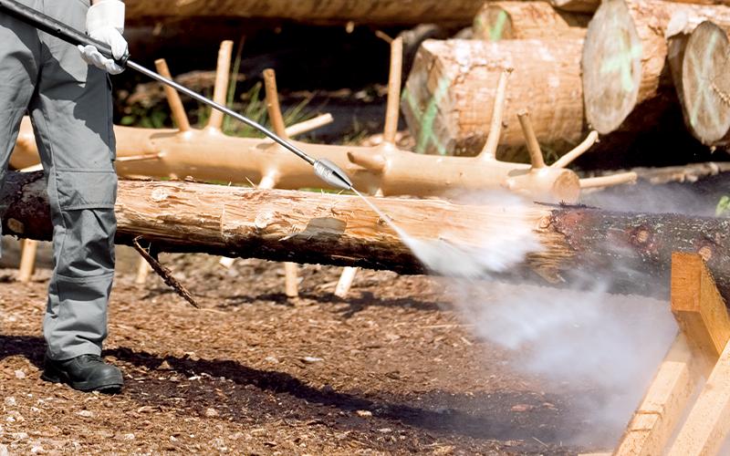 木材の洗浄・皮剥ぎに