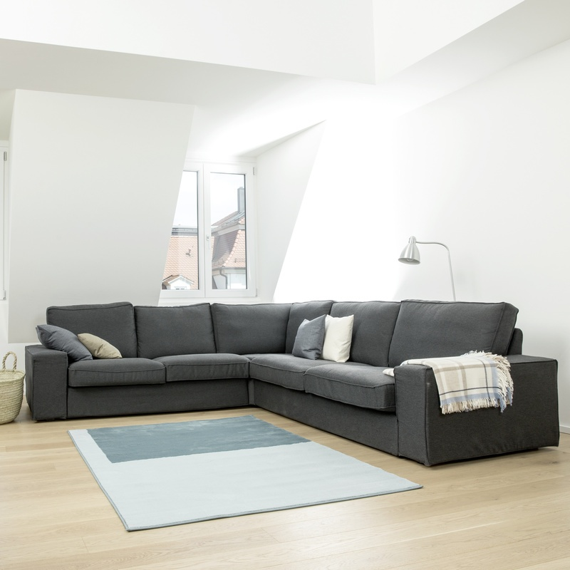 Gut bekannt Teppich- und Polsterreinigung | Kärcher CX58